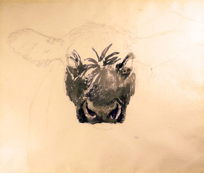 Jamie Wyeth, Study for Angus, 1970, watercolor and graphite on paper, 22 1/2 x 19 inches