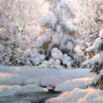 Michael Godfrey, Winter Morning Sun, oil on panel, 10 x 8 inches