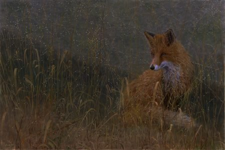 Timothy Barr, Dewy (SOLD), 2021, Oil on panel, 24 x 36 inches