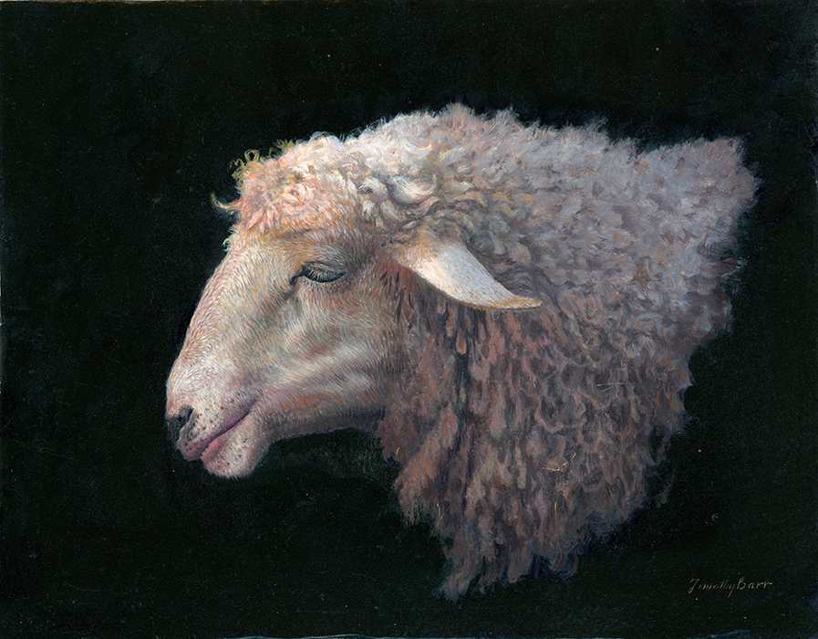 Tim Barr, Sheep Profile, 2015, oil on board, 11 x 14 ...