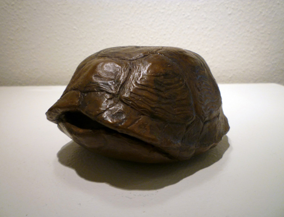 J. Clayton Bright, Turtle Shell, bronze, 4 1/2 x 3 1/2 x 2 inches