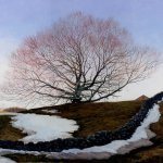 Timothy Barr, Sacred Beech, oil on panel, 20 x 24 inches