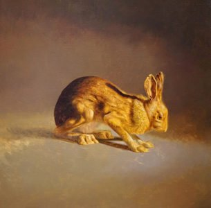 Drew Ernst, Showshoe Hare, 2019, Oil on linen, 22 x 22 inches