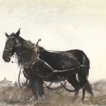 Andrew Wyeth, Farm Horse, 1954, Watercolor, 21 x 28 1/2 inches