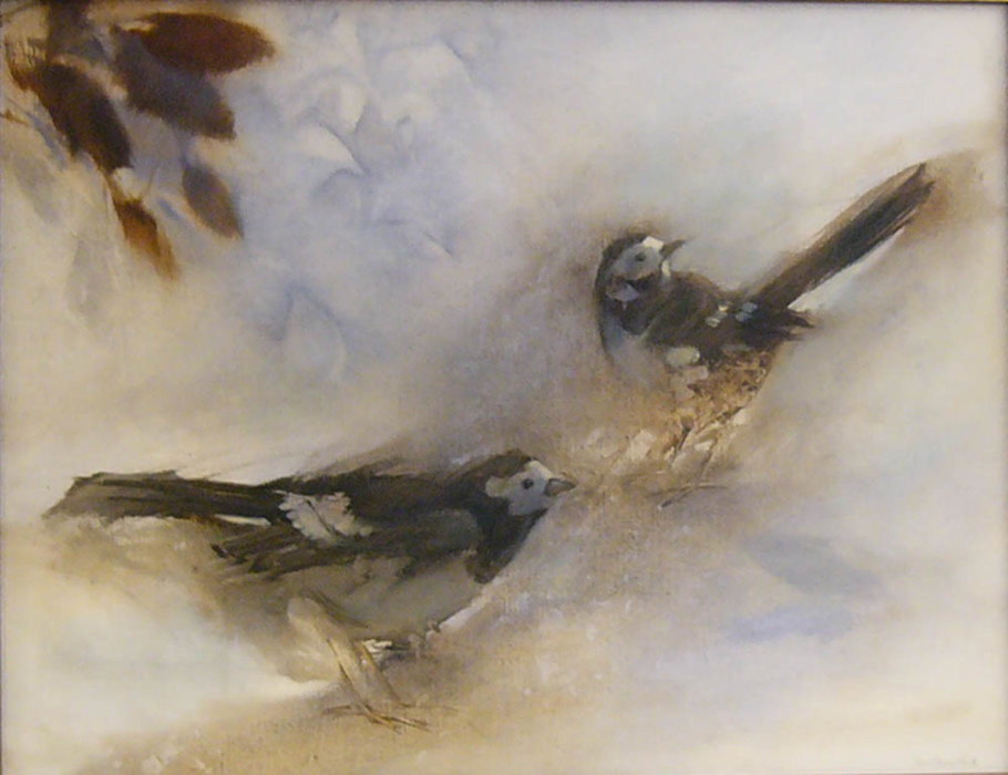 Jane Morris Pack, Two Birds, Oil on Paper, 19 x 25½ inches