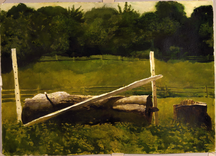 Jamie Wyeth, Jump, 1979, Watercolor on paper, 22 x 30 inches