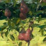 Jon Redmond, Pears, oil on board, 8 x 12 inches