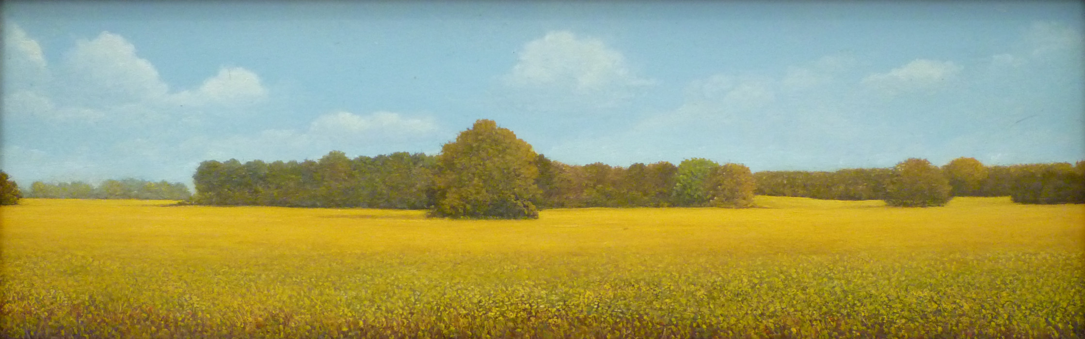 Robert Van Meter, Fall Field, oil on board, 3 x 13 inches