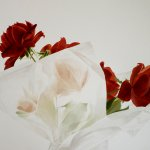 Greg Mort, Red Through White, 2013, watercolor, 21 x 28 inches