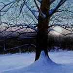 Greg Mort, White Into Blue, 2013, watercolor, 21 x 29 inches