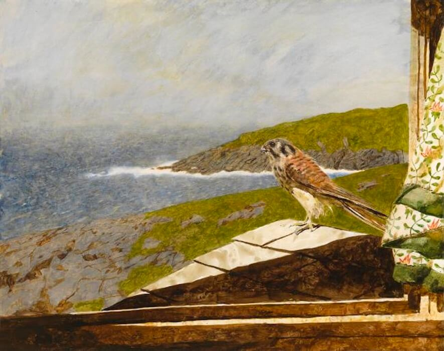 Jamie Wyeth, Kestrel, 1985, combined mediums on paper, 18 1/2 x 23 3/4 inches
