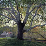 Timothy Barr, Brinton Mill Backlit, 2018, oil on panel, 24 x 36 inches