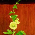 J. Clayton Bright, Hollyhock, Oil on linen on panel, 15 x 10 ½ inches
