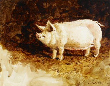 Jamie Wyeth, Pig (Den-Den), 1970, Watercolor and graphite on paper, 10 ½ x 13 ½ inches