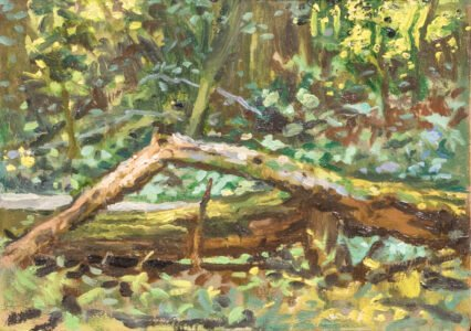 Michael Doyle, Woodland Light, 2021, Oil on panel, 6 x 8 ½ inches